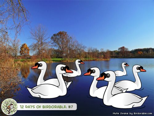 Seven Birdorable Mute Swans-a-Swimming