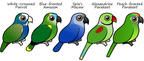 Five new Birdorable Parrots