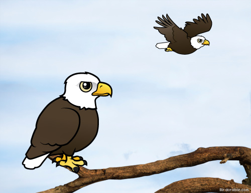 Birdorable Bald Eagle