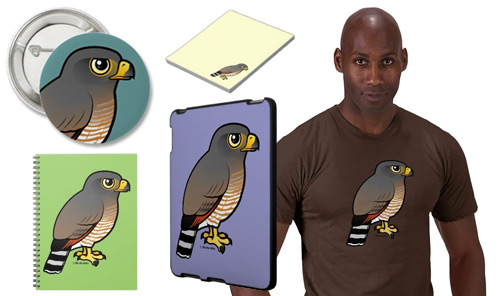 Birdorable Roadside Hawk Product Samples