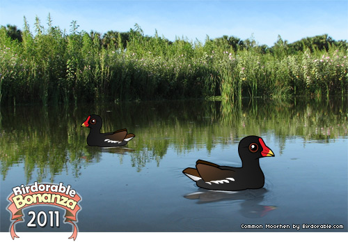 Birdorable Common Moorhen