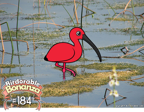 Cute Birdorable Scarlet Ibis