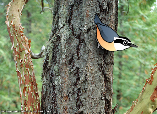 Birdorable Red-breasted Nuthatch