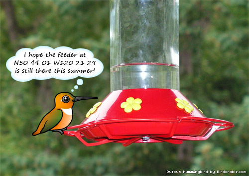 Birdorable Rufous Hummingbird
