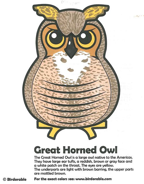 Great Horned Owl coloring fun!