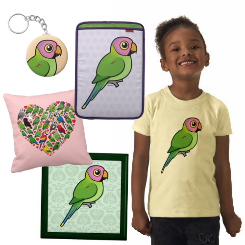 blossom headed parakeet