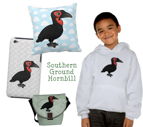 southern-ground-hornbill-products