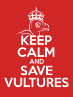 Keep Calm & Save Vultures