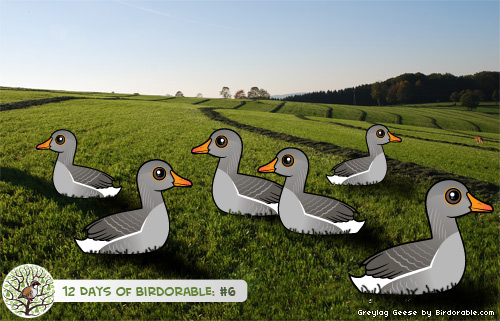 Six Birdorable Greylag Geese-a-Laying