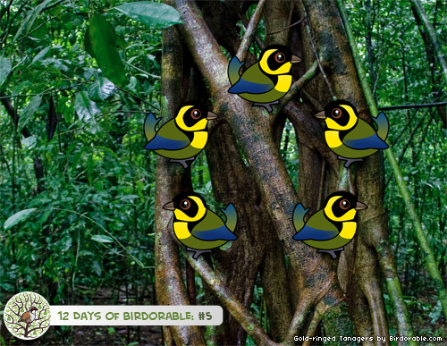 Five Birdorable Gold-ringed Tanagers