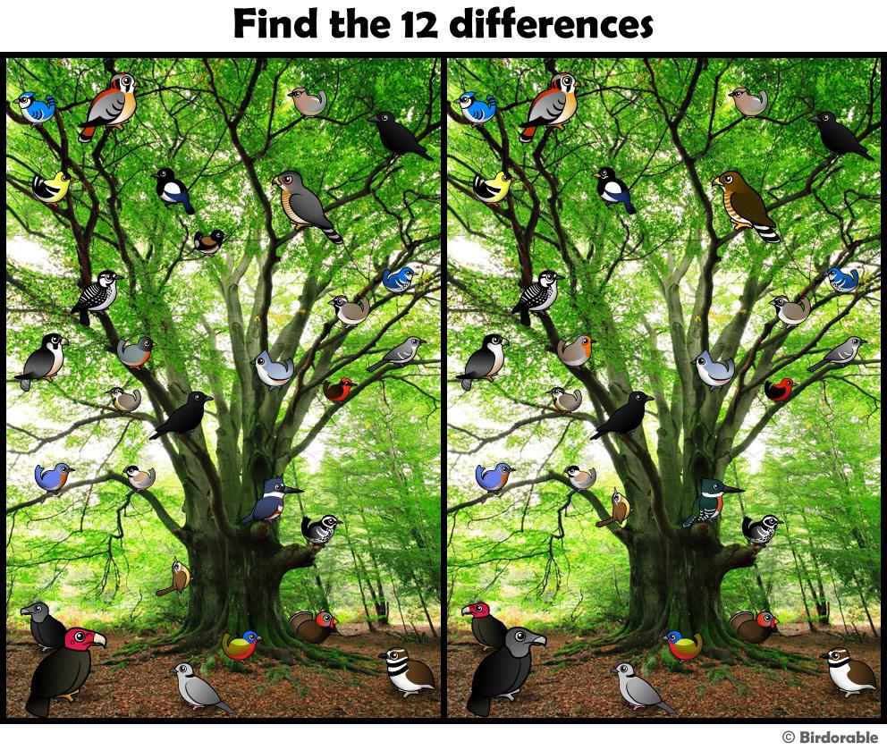 еще, находить отличия на картинках природа для начала
