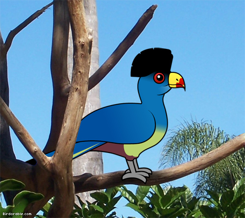 Birdorable Great Blue Turaco