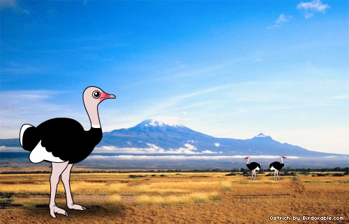 Birdorable Ostrich