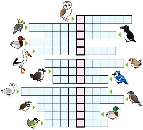Birdorable Puzzle