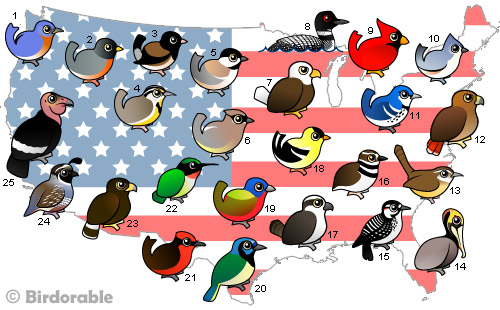 Map of United States with Birdorable birds