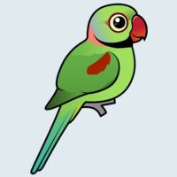 View more information about Alexandrine Parakeet
