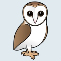 View more information about Barn Owl