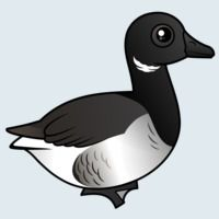 View more information about Brant Goose