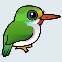 View more information about Cuban Tody