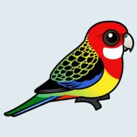 View more information about Eastern Rosella