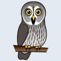 View more information about Great Grey Owl