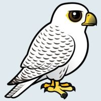 View more information about Gyrfalcon