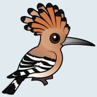View more information about Hoopoe