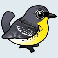 View more information about Kirtland's Warbler