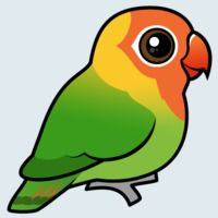 View more information about Lilian's Lovebird