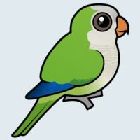 View more information about Monk Parakeet
