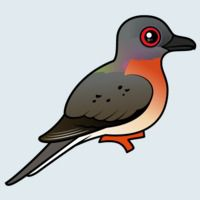 View more information about Passenger Pigeon