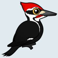 View more information about Pileated Woodpecker
