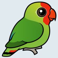 View more information about Red-headed Lovebird