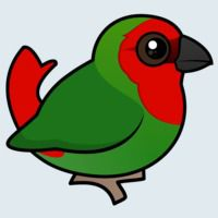 View more information about Red-headed Parrotfinch