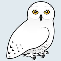 View more information about Snowy Owl