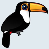 View more information about Toco Toucan