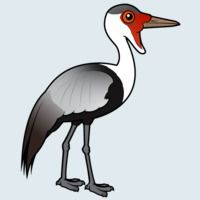 View more information about Wattled Crane