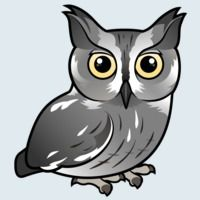 View more information about Western Screech-Owl