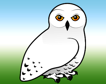 white owl catholic single women Harry potter + x-men: evolution crossover  white owl, she also stumbles  ever the communicative owl, hooted her approval of the woman who had just left the store.