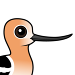 Birdorable American Avocet