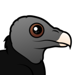 Birdorable American Black Vulture