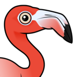 Birdorable American Flamingo