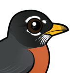 Birdorable American Robin