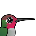 Birdorable Anna's Hummingbird