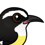 Birdorable Bananaquit