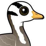 Birdorable Bar-headed Goose