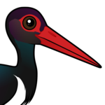 Birdorable Black Stork