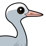 Birdorable Blue Crane