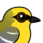 Birdorable Blue-winged Warbler