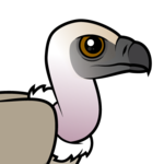 Birdorable Cape Vulture